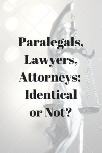 Paralegal Feature