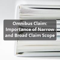omnibus claim provisional patent application