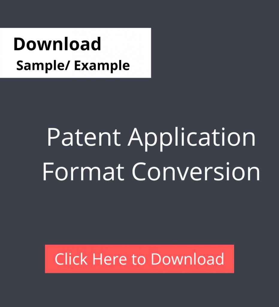 Patent Application Format Conversion Service